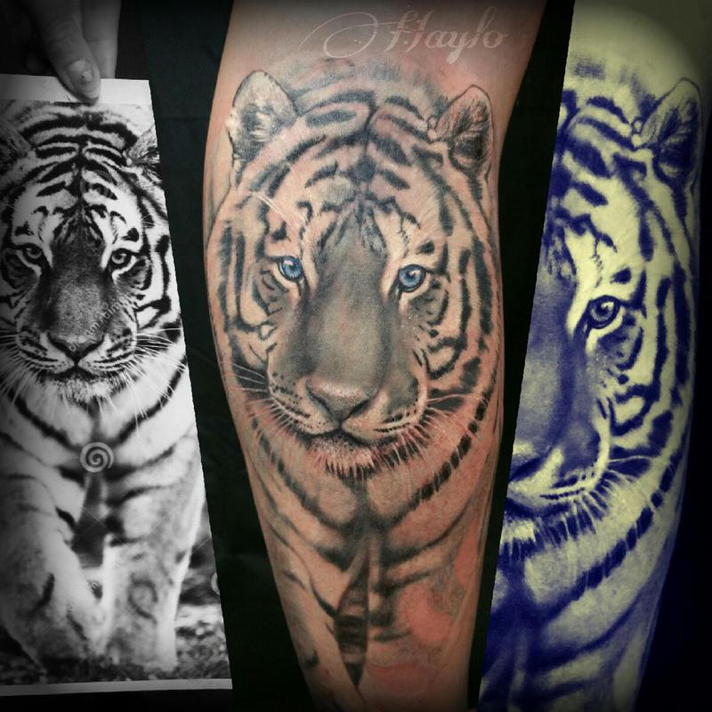 25df672196461 Lucky Bamboo Tattoo : Tattoos : Nature Animal Tiger : Realistic White Tiger  with blue eyes