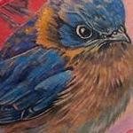 Blue Bird Tattoo Design Thumbnail