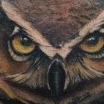Save the owl Tattoo Design Thumbnail
