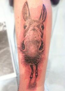 tattoos/ - Photo Realistic Black and Gray Donkey Tattoo - 67651