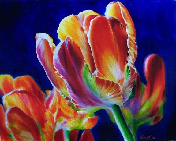 Art Galleries - Tulips - 50278