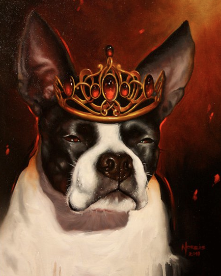 Art Galleries - dog portrait - 58287
