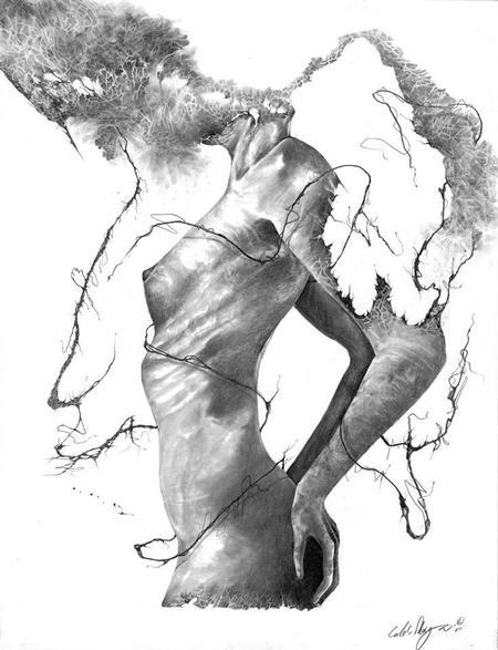 Art Galleries - untitled - 123643