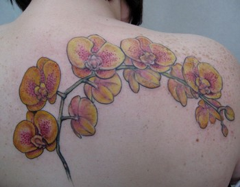 tattoos/ - yellow orchids - 46446