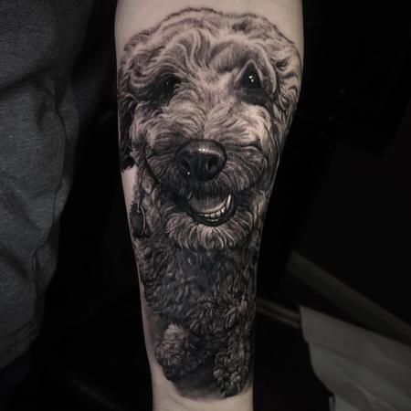 tattoos/ - Poodle Dog Portrait - 139647