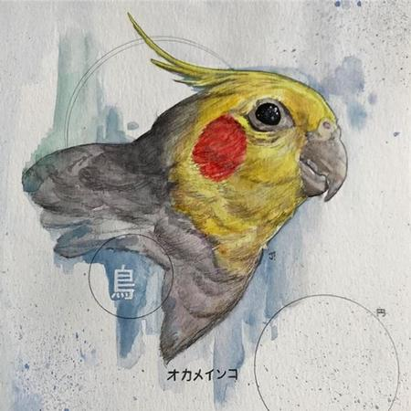 Art Galleries - Jesse Carlton Parakeet - 138964