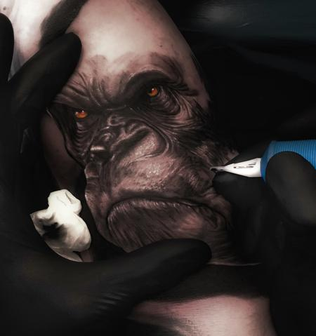 tattoos/ - gorilla - 128122