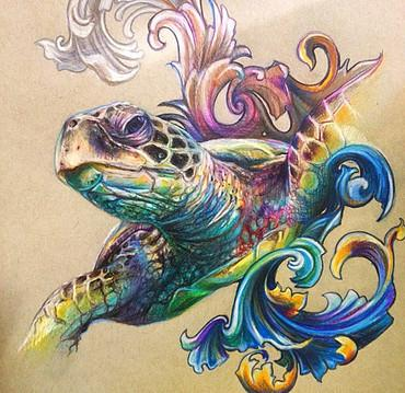 Art Galleries - Sea Turtle - 119832