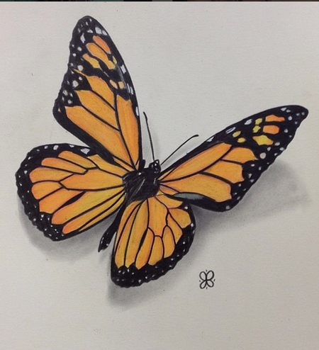 Art Galleries - Monarch Butterfly - 108956