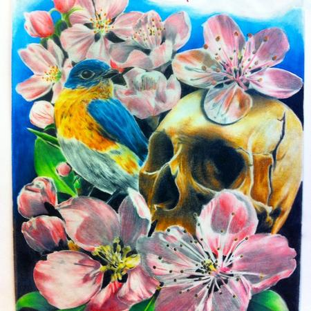 Art Galleries - Skull and Bird with Flowers - 114207