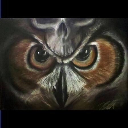 Art Galleries - Owl - 106201