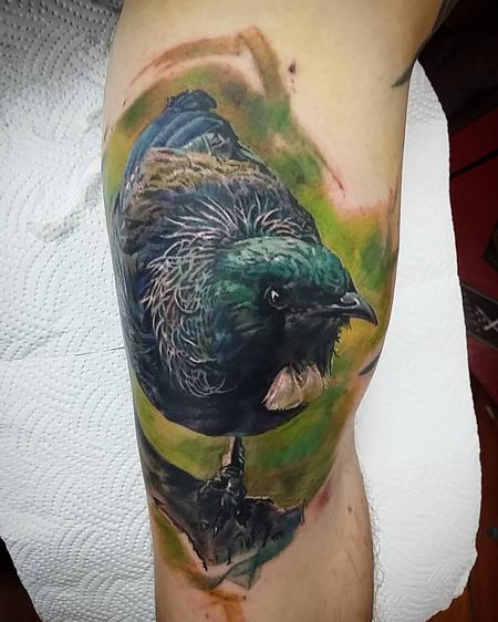 tattoos/ - Tui bird - 121947