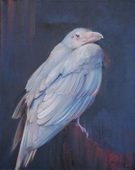 Art Galleries - Albino Raven - 80757