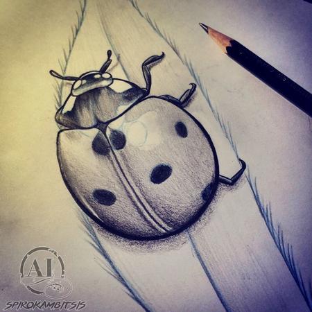 Art Galleries - Ladybug sketch - 111347