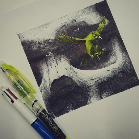 Art Galleries - Skull and Bird drawing - 116393