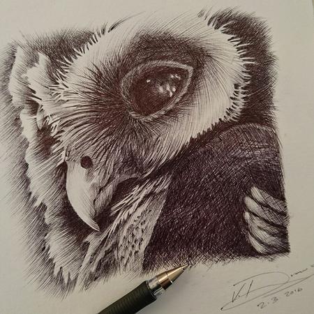 Art Galleries - Owl - 116392