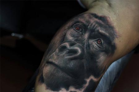 tattoos/ - Gorilla - 101782
