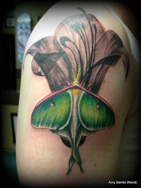 tattoos/ - Luna moth - 66330