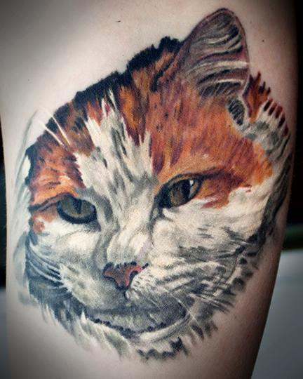 tattoos/ - cat portrait - 108211