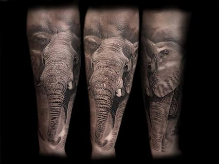 tattoos/ - BNG Elephant  - 127257