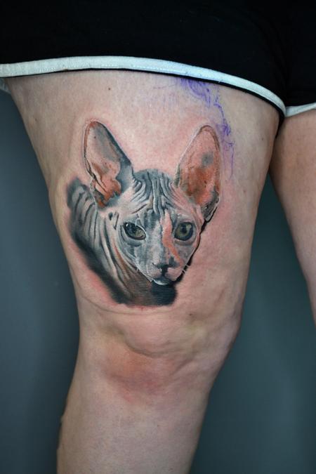 tattoos/ - Sphynx Cat Portrait  - 141049
