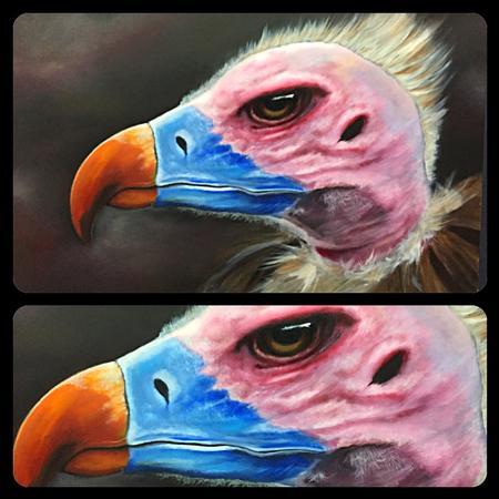 Art Galleries - Vulture Painting - 122448