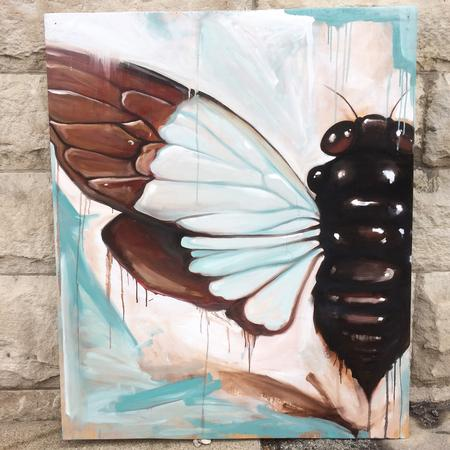 Art Galleries - Cicada  - 124961