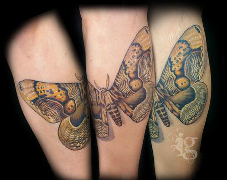 tattoos/ - Giant Moth leg tattoo by Haylo - 141613