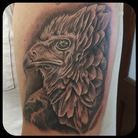 tattoos/ - Bateleur Eagle - 142769